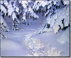 jfjaestad - winter landscape