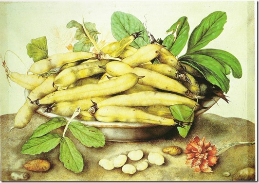 garzoni - beans