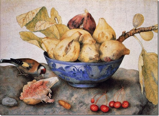 garzoni - figs2